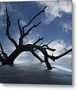 On A Misty Morning Metal Print