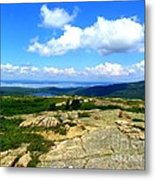 On A Mountain In Maine Metal Print