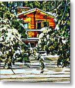 On A Winter Day Metal Print by Steve Harrington