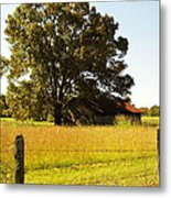 On Golden Farm Metal Print