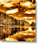On Golden Pond Metal Print by David Patterson