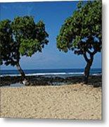 On Hawaii's The Big Island Metal Print
