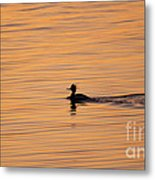 On Painted Waters Metal Print