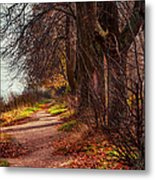 On The Bank Of River Volga Metal Print by Jenny Rainbow