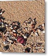 On The Beach 02 Metal Print