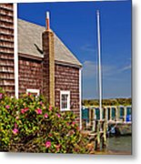On The Cape Metal Print