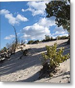 On The Dune Metal Print