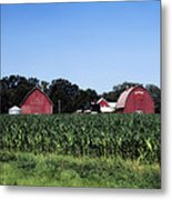 On The Farm In Belle Plaine Metal Print
