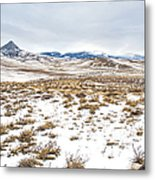 On The Fence Line Metal Print by Fran Riley
