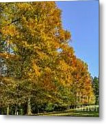 On The Grounds Of Biltmore Metal Print