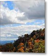 On The Mountain Metal Print by Judy  Waller