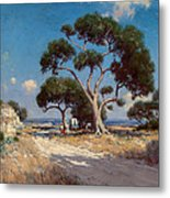 On The Old Blanco Road Southwest Texas Metal Print