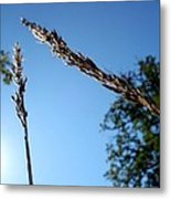 On The Prairie #10 Metal Print