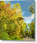 On The Road To Autumn Metal Print