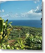 on the road to Hana Metal Print