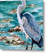 On The Rocks Great Blue Heron Metal Print by Roxanne Tobaison