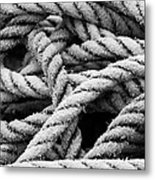 On The Ropes 2 Metal Print