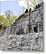 On The Side Of The Mountain Metal Print