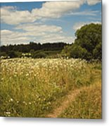 On The Summer Meadow II. Russia Metal Print