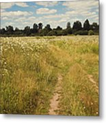 On The Summer Meadow. Russia Metal Print by Jenny Rainbow