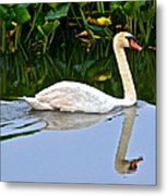 On The Swanny River Metal Print