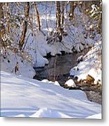 On The Thaw Metal Print