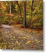 On The Way Metal Print by Gregory Ballos