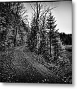 On The Way To Cary Lake Metal Print by David Patterson