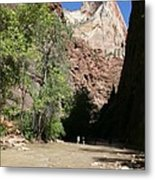On The Way To The Narrows Metal Print