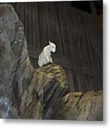 On Top Of The World Metal Print