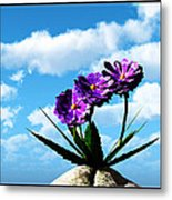 On Top Of The World... Metal Print