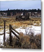 Once A Shelter Metal Print