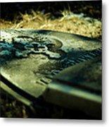Once Beloved Metal Print