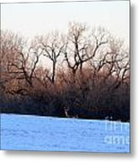 One Buck At A Time Metal Print