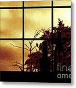 One Crow Outside My Window Metal Print