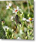 One Giant Spider Metal Print