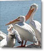 One In Every Crowd Metal Print