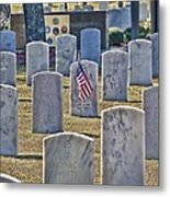 One Lonely Flag Metal Print