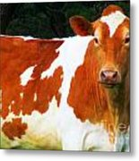 One Lovely Guernsey Metal Print by Tina M Wenger