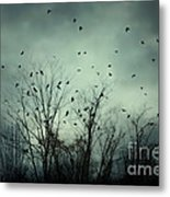 One November Night Metal Print by Sharon Coty