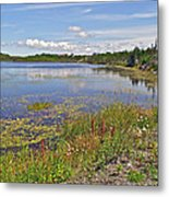One Of Many Lakes In Newfoundland Metal Print