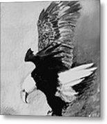 One Of My Eagles Metal Print