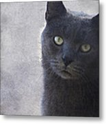 One Of Those Mysterious Blue Days Metal Print