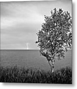 One On One  Metal Print