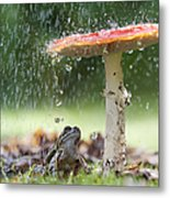 One Rainy Day Metal Print by Tim Gainey