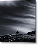One Metal Print by Rod Sterling