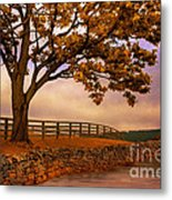 One Tree Hill Metal Print by Lois Bryan