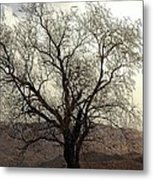 One Tree Metal Print