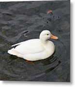 One White Duck Metal Print