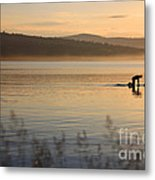 One With Nature 1 Metal Print